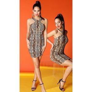 Snake print cocktail dress
